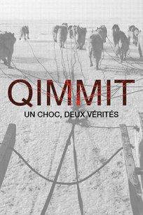 Qimmit : un choc, deux vérités