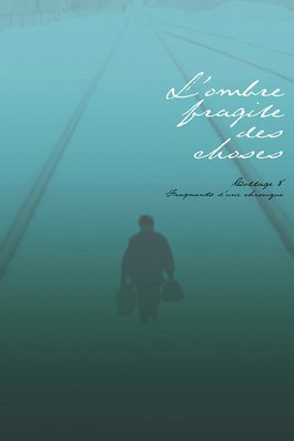 L'ombre fragile des choses