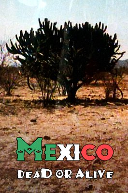 Mexico Dead or Alive
