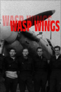 Wasp Wings