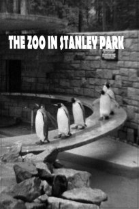 The Zoo in Stanley Park