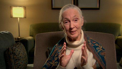Surviving Progress (Clip 2 - David Suzuki & Jane Goodall)