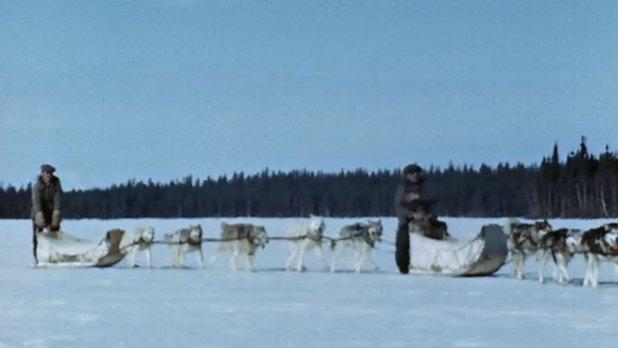 Chasseurs de caribou