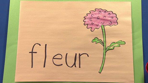 Écriture : fleur