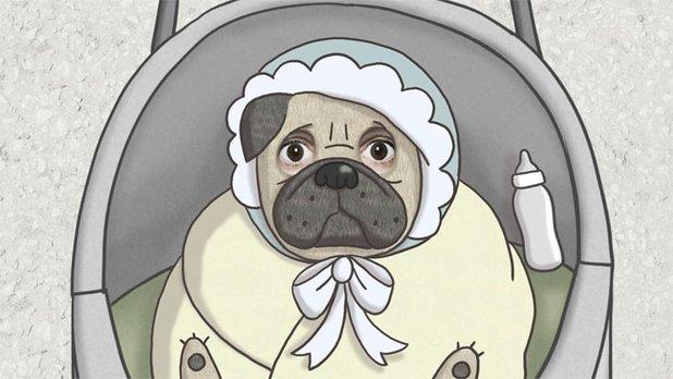 Monsieur Pug (Clip)