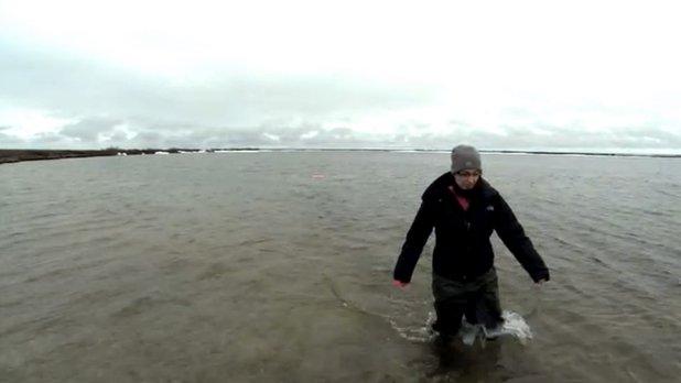 La science au sommet du monde - Travail sur le terrain : échantillonnage de la végétation aquatique au Parc National Wapusk