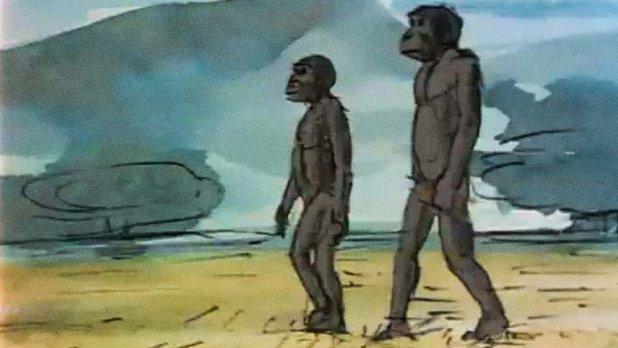 L'Homme : un voyage dans le temps
