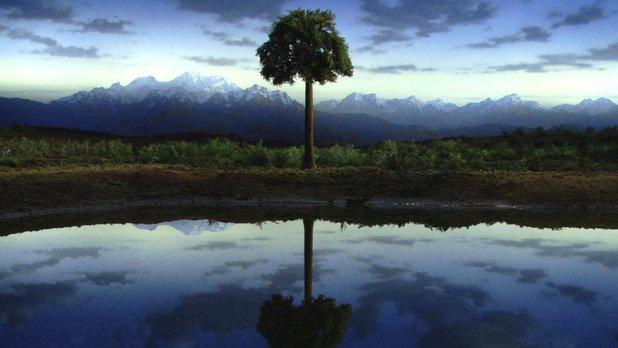La planète miracle - De nouveaux défis