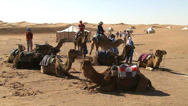 Nouveaux paradis - Saison 2 - Maroc : la magie du Grand Sud
