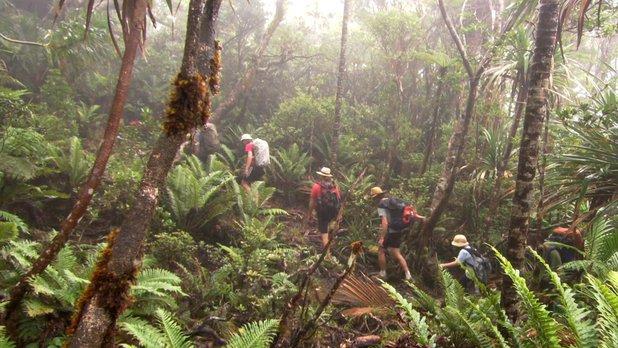 Nouveaux paradis - Saison 2 - Nouvelle Calédonie : l'île rouge au coeur vert