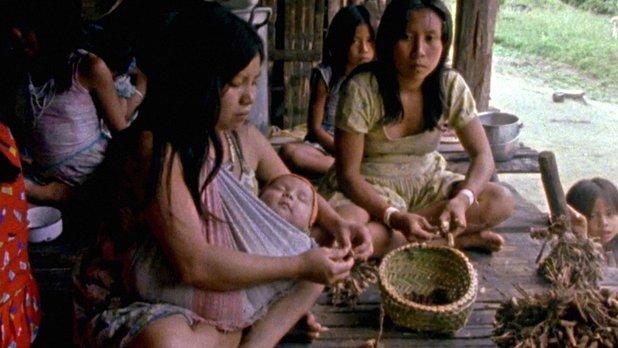 Vivre en Amazonie