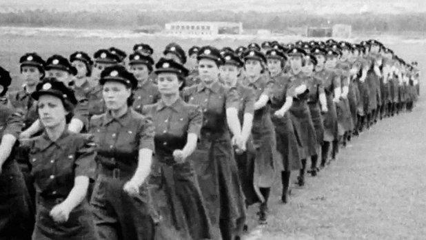Nos femmes ailées