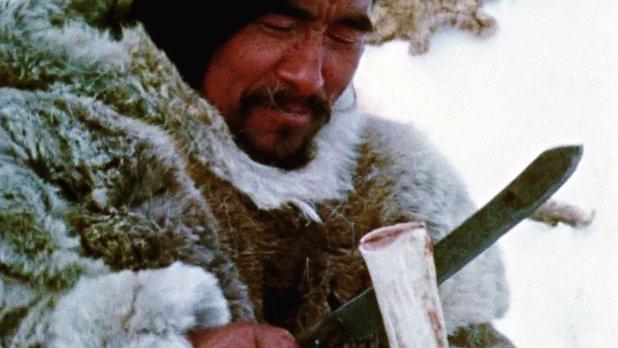 Tuktu et la chasse au caribou