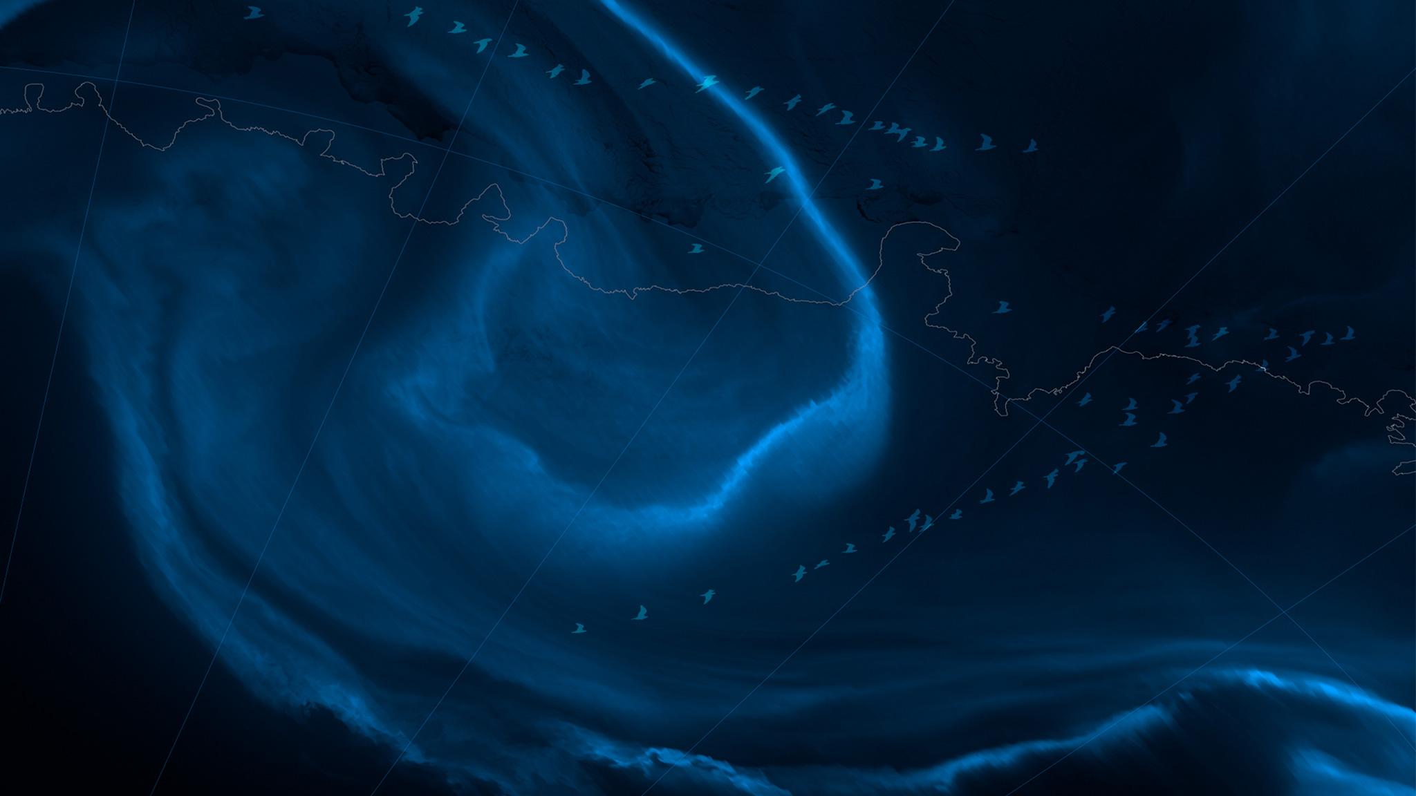 Plan large : quand les sciences de la mer font leur cinéma