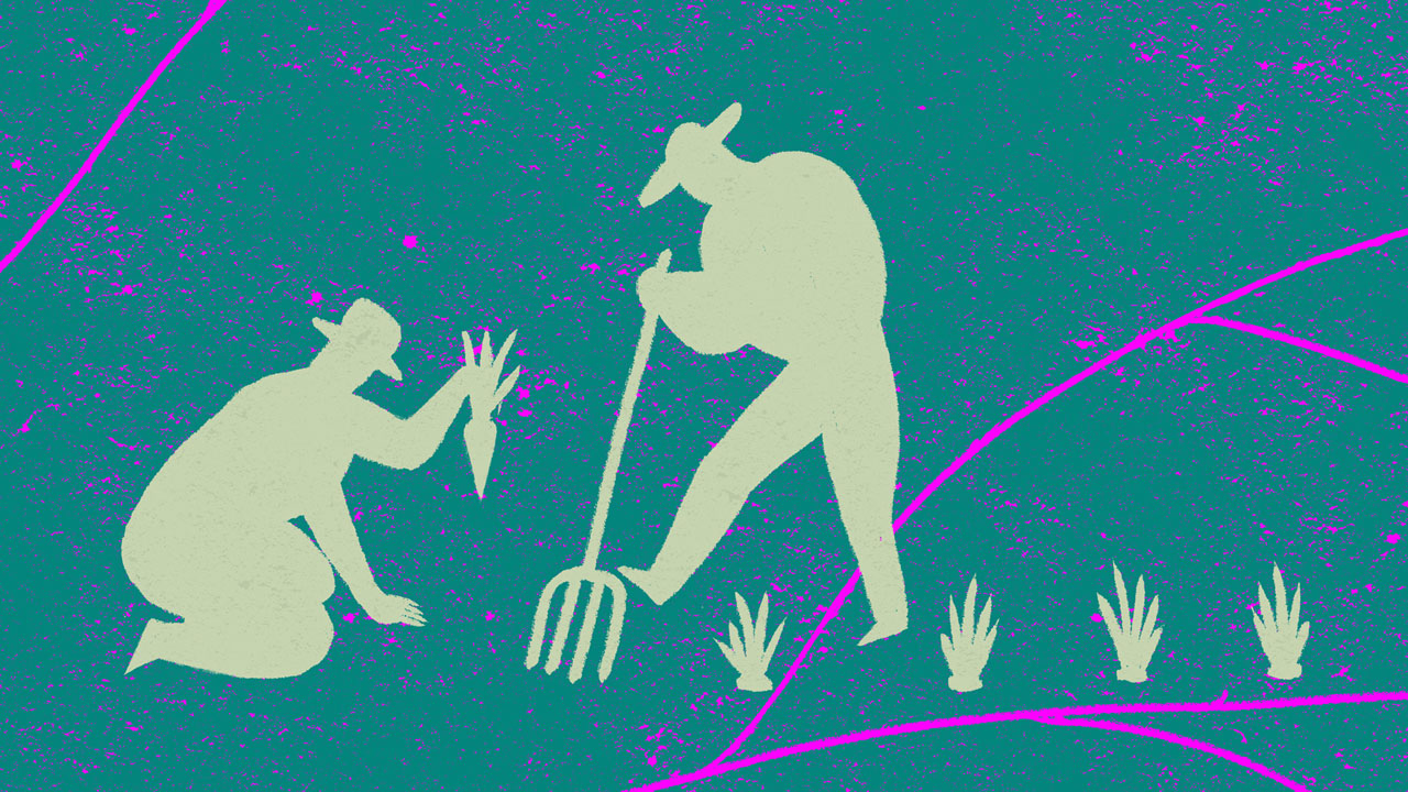 Ramaillages (Gatherings) - Episode 5 - Harvests