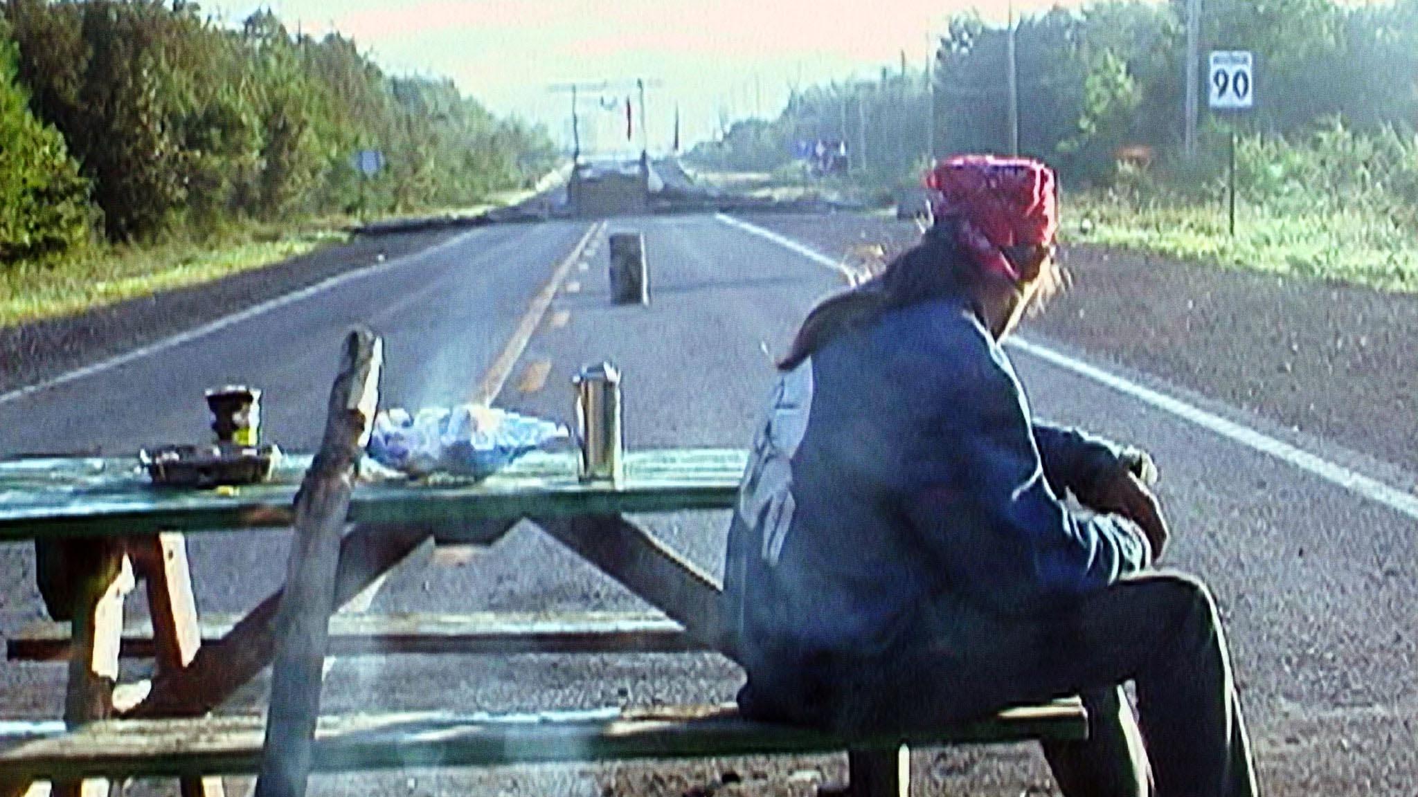 Films sur l'environnement choisis par Naomi Klein